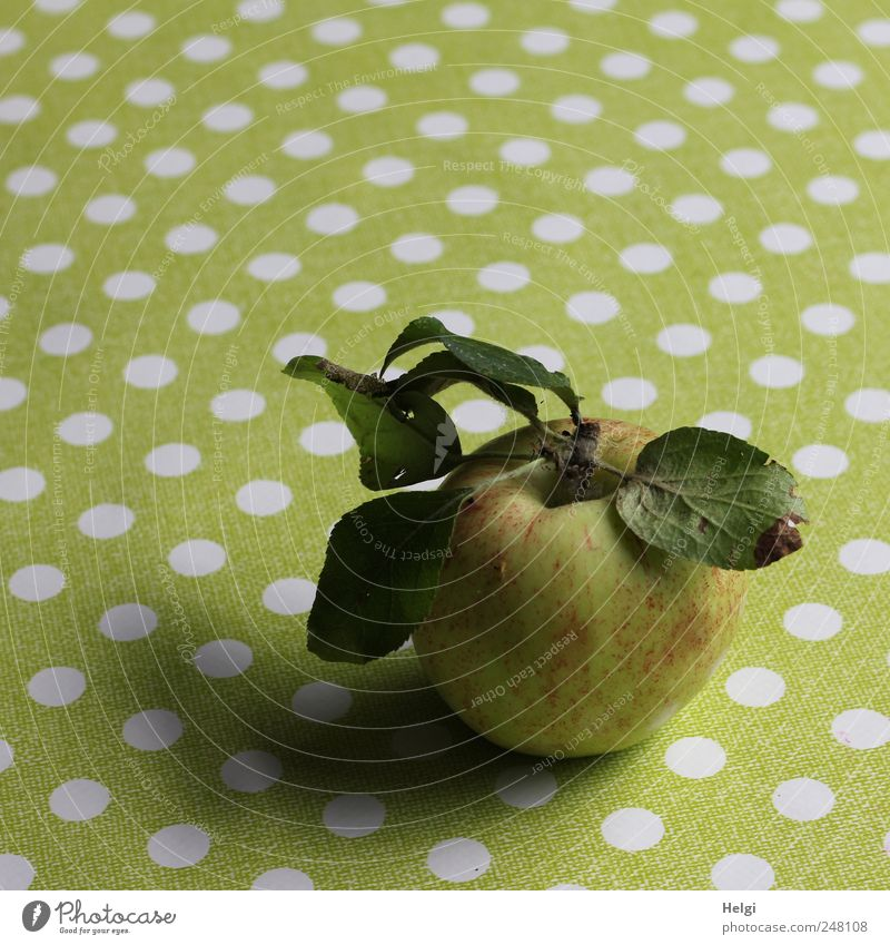 freshly harvested apple with leaves lies on a table with green tablecloth and white dots Food Fruit Apple Nutrition Organic produce Vegetarian diet Diet Leaf