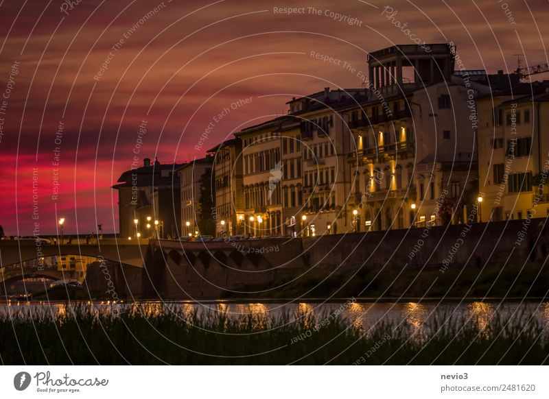 Promenade in Florence at night Culture Old town House (Residential Structure) Garden Orange Red Wanderlust Town Downtown City life Coast Housefront Log home