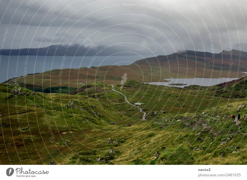 Isle of Skye Environment Nature Landscape Bad weather Foliage plant Meadow Green Far-off places Scotland Island Vacation & Travel Traveling Go up Hiking