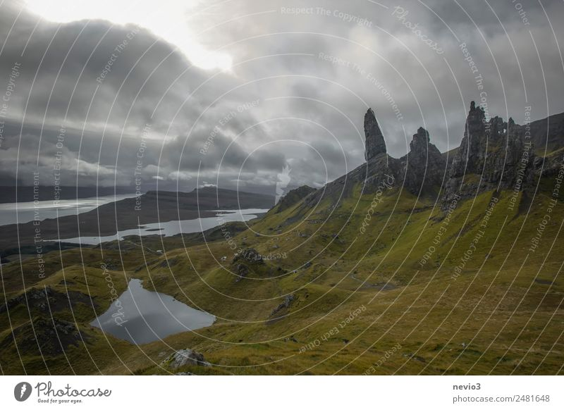 Old Man of Storr in Scotland Landscape Bad weather Storm Gale Grass Rock Mountain Coast Fjord Gray Green Storm warning Great Britain Cloud cover Clouds Dark