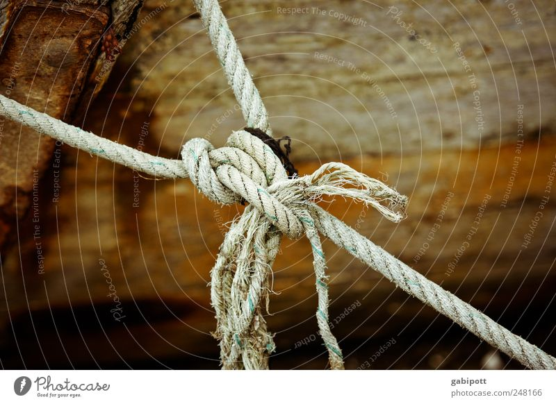 linkages Fishing boat Rope Knot Node Synthesis Wood String Old Broken Trashy Brown Contentment Decline Past Transience Change Bind fast Connection Fastening