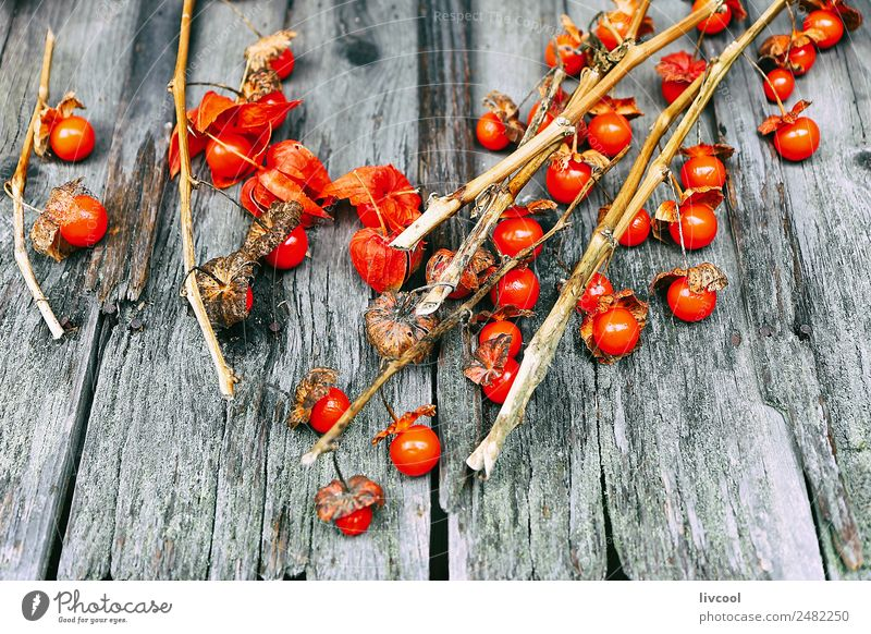 Little tomatoes over wood Food Vegetable Fruit Tomato Lunch Organic produce Vegetarian diet Diet Vacation & Travel Tourism Trip Eating Shopping Exotic Healthy