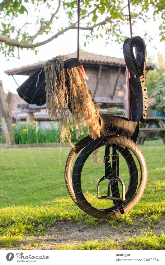 Horse shaped swing, made with tires and ropes. Nature Funny Playing Infancy Happiness To enjoy Rope Tire Vertical Playground