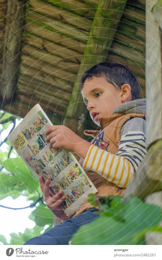 Boy reading a comic in the wooden house of the tree. Child Human being Nature Tree House (Residential Structure) Boy (child) Masculine Infancy Sit Book Reading