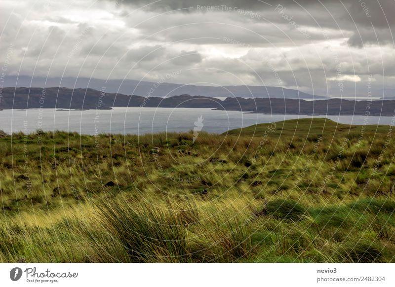 Isle of Sky in Scotland Landscape Horizon Autumn Climate Bad weather Storm Rain Grass Meadow Field Hill Rock Coast Ocean Island Green Great Britain Isle of Skye