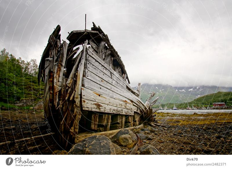 Shipwreck on the Lofoten Islands Fishery Nature Algae Mountain Coast Bay Fjord Ocean Arctic Ocean Lofotes Low tide Norway Fishing port ship graveyard Navigation