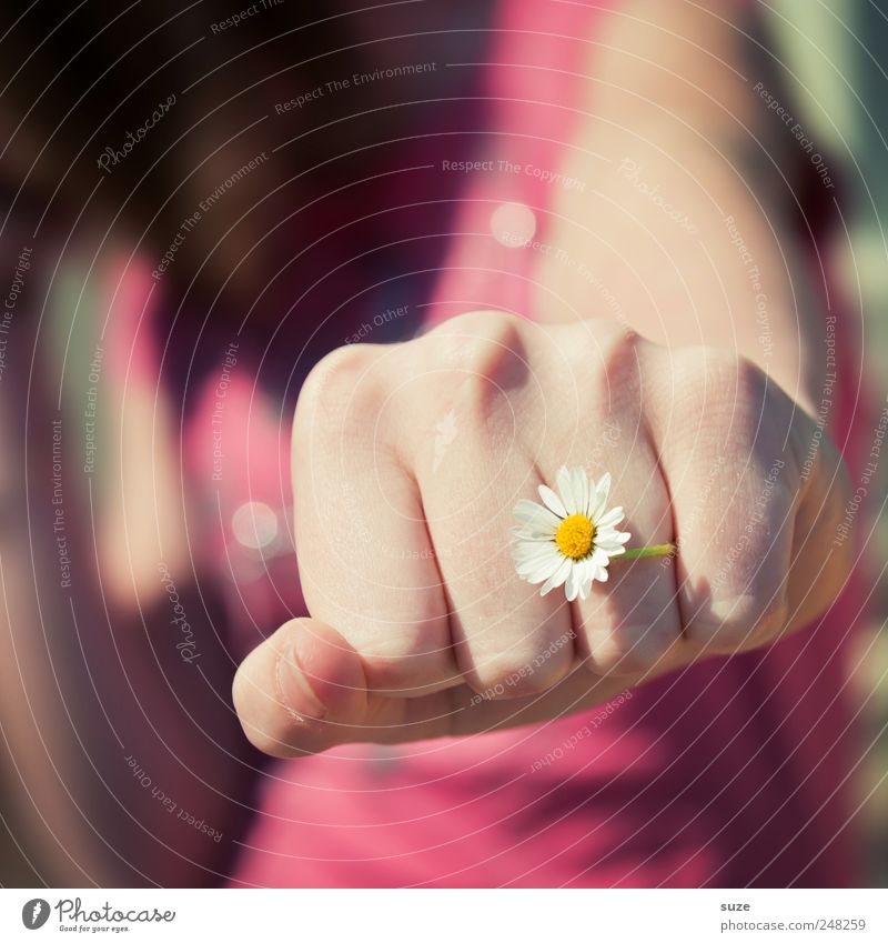 Human being Woman Nature Youth (Young adults) Hand Flower Adults Feminine Pink Arm Skin Fingers Young woman Delicate Force Daisy