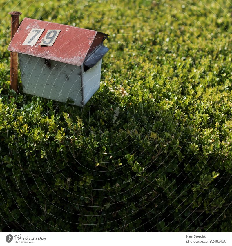 Letter box Living or residing Flat (apartment) Plant Bushes Foliage plant Garden Detached house Mailbox Digits and numbers Old Authentic Simple Trashy Gloomy