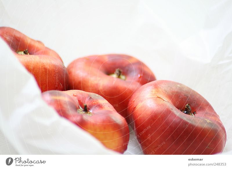 mountain nectarines Food Fruit Nectarine Fruity Nutrition Organic produce Vegetarian diet Esthetic Fresh Healthy Delicious Wet Juicy Sweet Many Red White