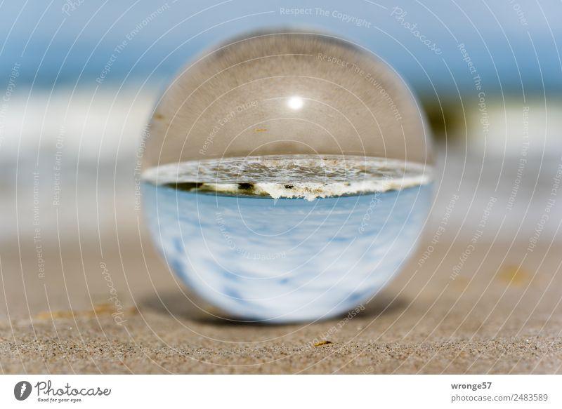 Head Cinema I Vacation & Travel Freedom Summer Summer vacation Beach Ocean Waves Nature Beautiful weather Coast North Sea Baltic Sea Maritime Blue Brown White