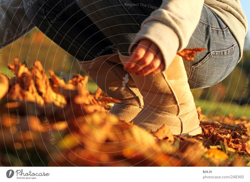 Human being Nature Plant Joy Leaf Environment Meadow Autumn Playing Legs Air Feet Brown Climate Action Political movements