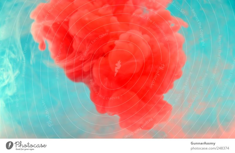 Red Art Exceptional Wild Contentment Esthetic Idea Fluid Bizarre Abstract Underwater photo Experimental Emotions