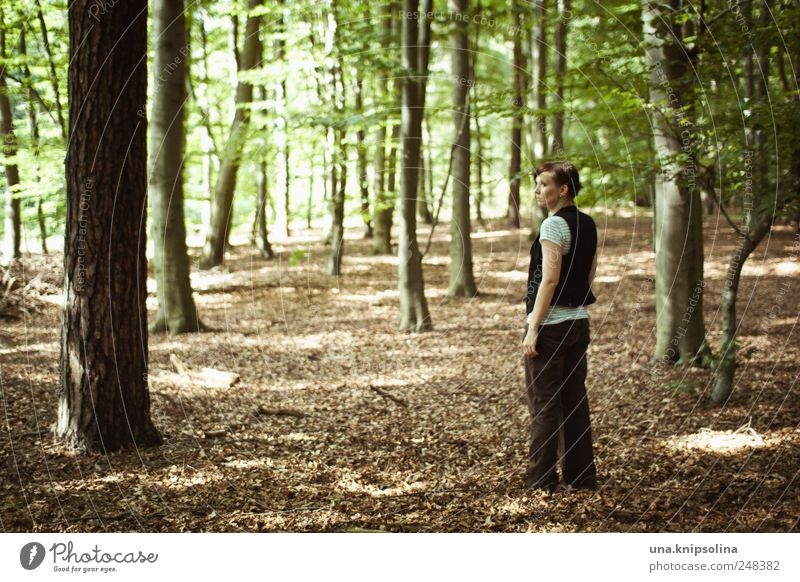 Human being Woman Nature Tree Plant Loneliness Calm Adults Forest Relaxation Environment Landscape Dream Going Wait Natural