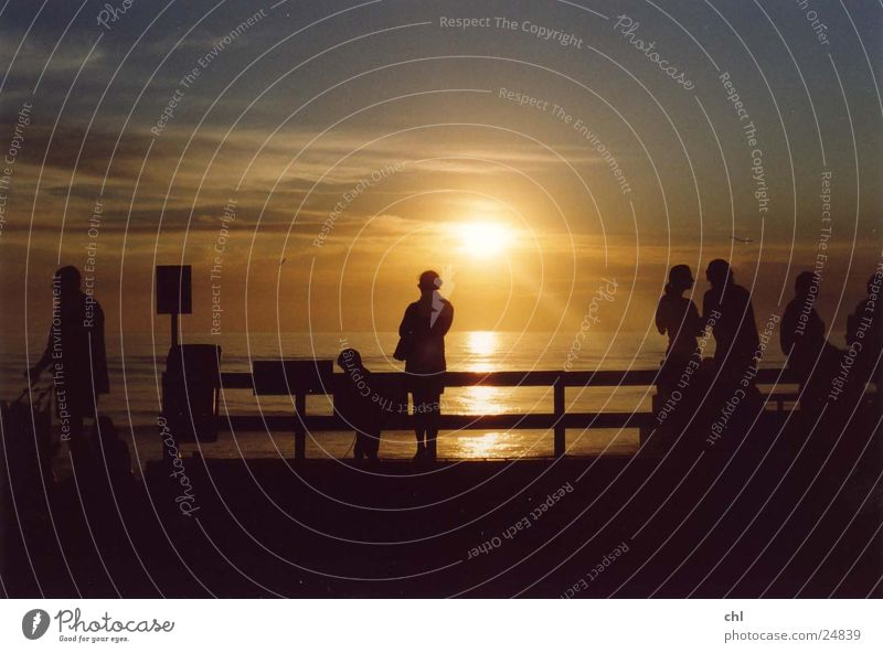 Silhouettes at sunset Sun Beach Ocean Human being Life Sunset Evening Light Group Multiple To enjoy Relaxation Fence Back-light Sky To talk Together Adults Calm