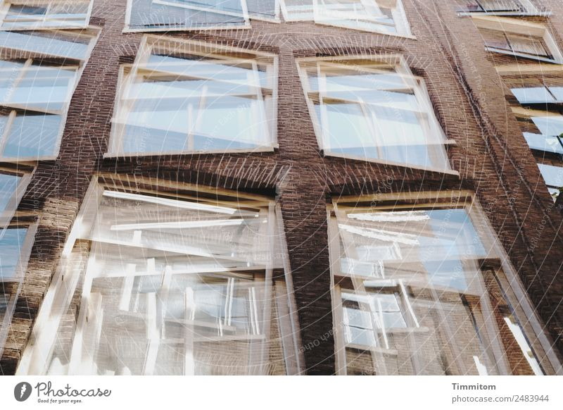 Facades (6) Netherlands Town House (Residential Structure) Wall (barrier) Wall (building) Window Stone Glass Esthetic Blue Brown White Double exposure
