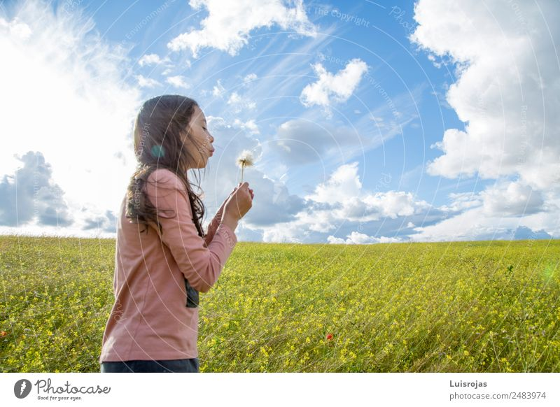 girl walking in a field with yellow flowers sunny day Joy Healthy Fragrance Vacation & Travel Summer Feminine Girl 1 Human being 3 - 8 years Child Infancy