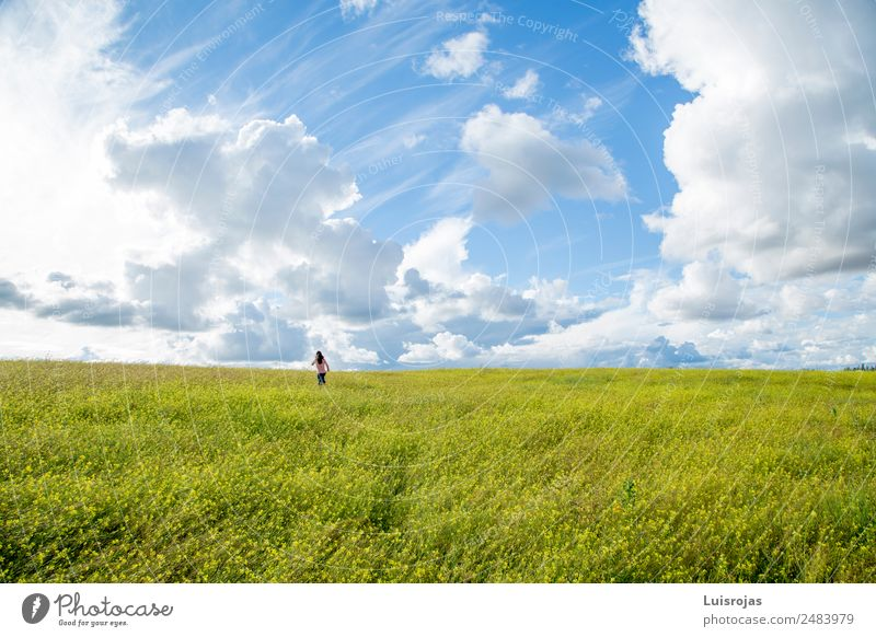 girl walking in a field with yellow flowers sunny day Child Human being Nature Blue Green Sun Landscape Flower Clouds Joy Girl Life Yellow Healthy Environment