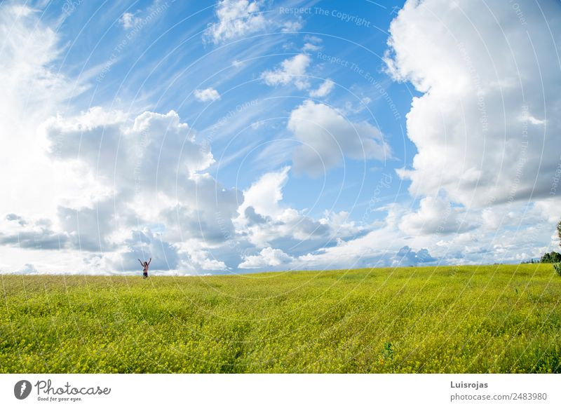 girl walking in a field with yellow flowers sunny day Healthy Life Relaxation Leisure and hobbies Vacation & Travel Girl 1 Human being 3 - 8 years Child Infancy
