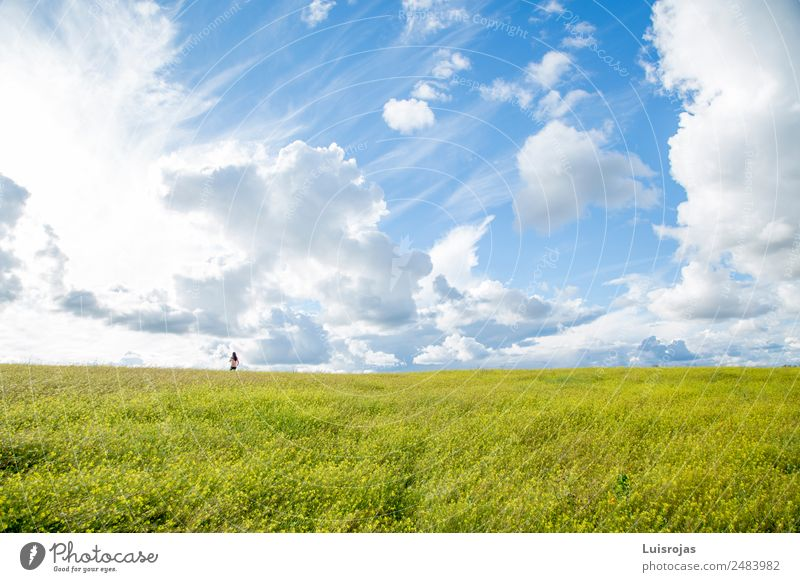 girl walking in a field with yellow flowers one day Lifestyle Joy Vacation & Travel Freedom Human being Feminine Child Girl 1 3 - 8 years Infancy Environment