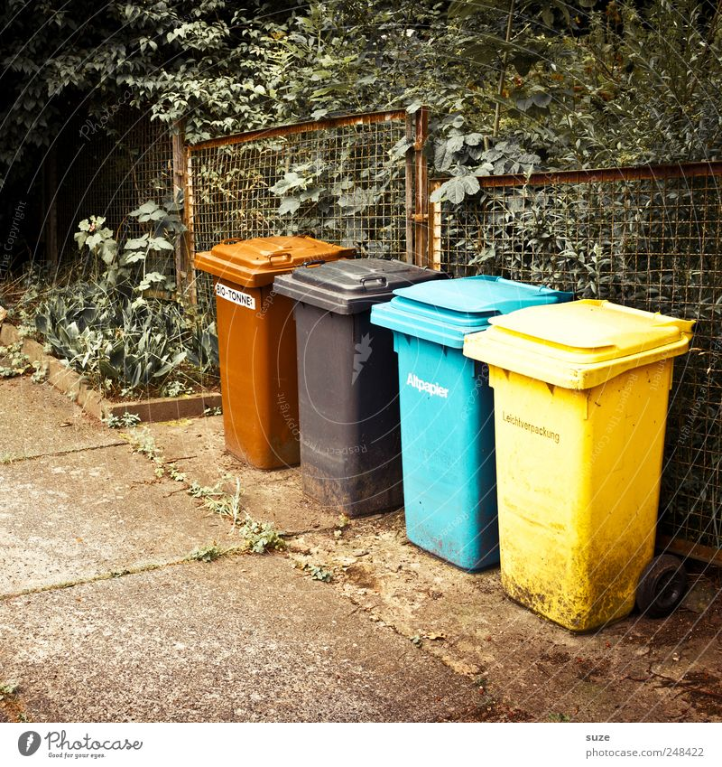 Blue Black Yellow Environment Brown Concrete Paper Ground Floor covering Bushes Trash Fence Divide Recycling Trash container Paving tiles