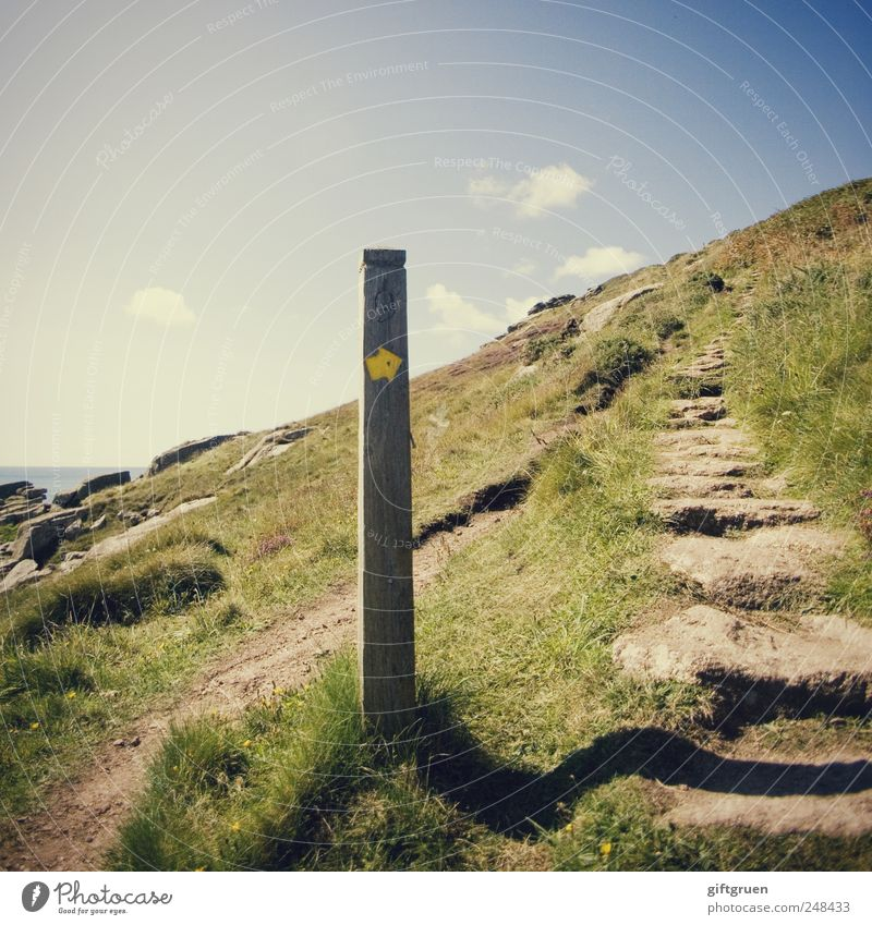 UPWARDS Environment Nature Landscape Plant Elements Earth Sky Clouds Summer Beautiful weather Grass Meadow Hill Rock Coast Hiking Pole Road marking