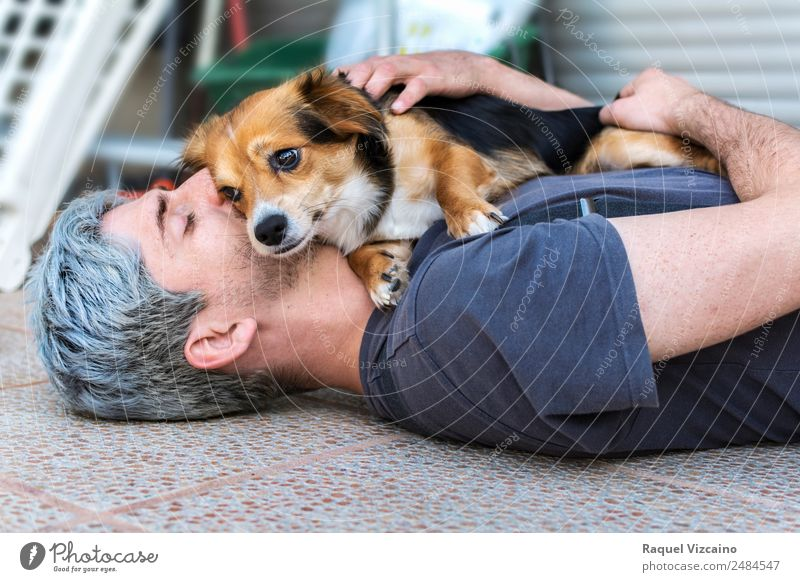 Beautiful hug of a man and his beloved dog. Lifestyle Man Adults Head Arm 1 Human being 30 - 45 years Gray-haired Pet Dog Animal Touch Lie Friendliness Brown