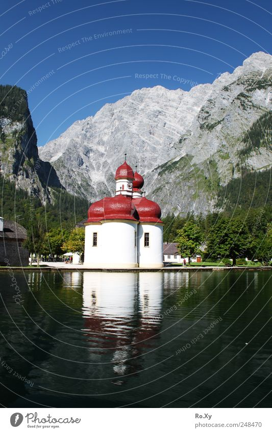 Boat trip to St. Bartholomä Nature Landscape Water Sky Cloudless sky Summer Tree Lake Swimming & Bathing Observe Driving Hiking Lake Königssee Navigation Church