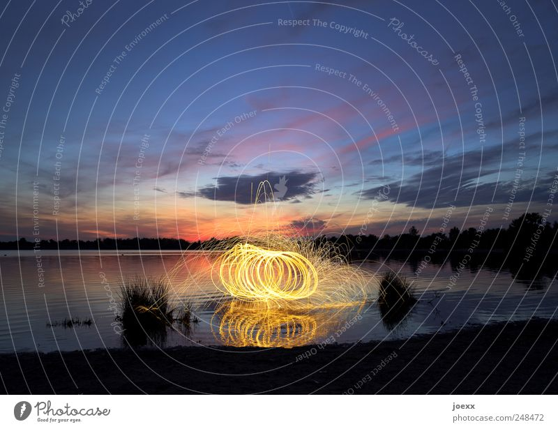 fire magic Water Sky Clouds Sunrise Sunset Beautiful weather Plant Lakeside Rotate Blue Yellow Violet Red Black Movement flying sparks Embers Colour photo