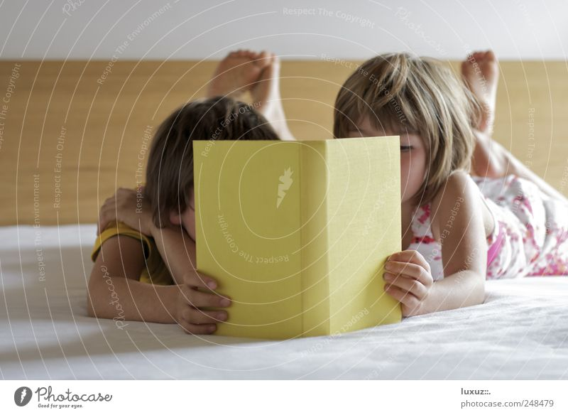 Child Calm Playing Dream Family & Relations Friendship Together Contentment Book Time Lie Study Help Reading Team Education