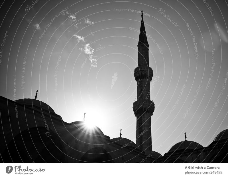 love Istanbul Sky Turkey Town Tower Manmade structures Building Architecture Mosque Roof Domed roof Tourist Attraction Blue Mosque Illuminate Old Authentic
