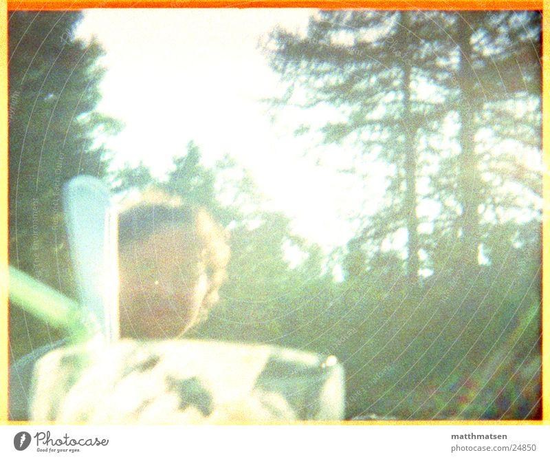 Man Nature Sun Green Summer Forest Glass Modern Straw Overexposure