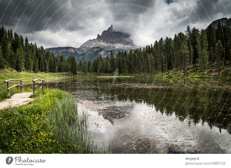 gosh Vacation & Travel Trip Summer vacation Mountain Hiking Nature Landscape Storm clouds Climate Weather Meadow Forest Alps Dolomites Three peaks Peak Lakeside