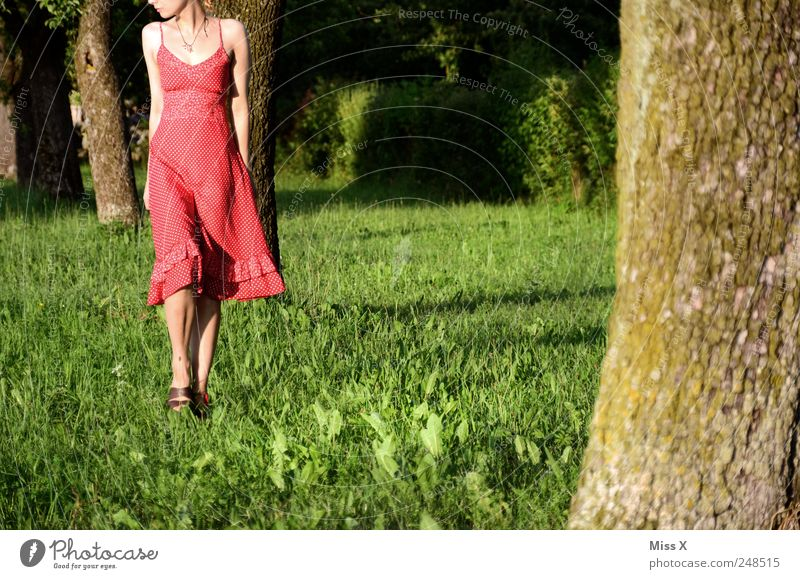 Human being Nature Youth (Young adults) Beautiful Tree Red Summer Loneliness Meadow Feminine Grass Park Going To go for a walk Dress Beautiful weather
