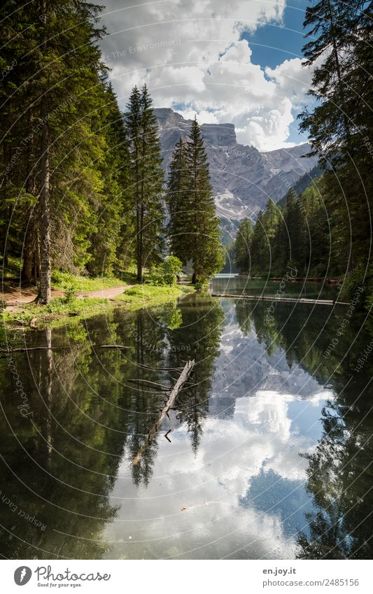 inflow Vacation & Travel Mountain Nature Landscape Sky Clouds Summer Tree Fir tree Coniferous trees Forest Alps Dolomites Lakeside Pragser Wildsee Lake Italy