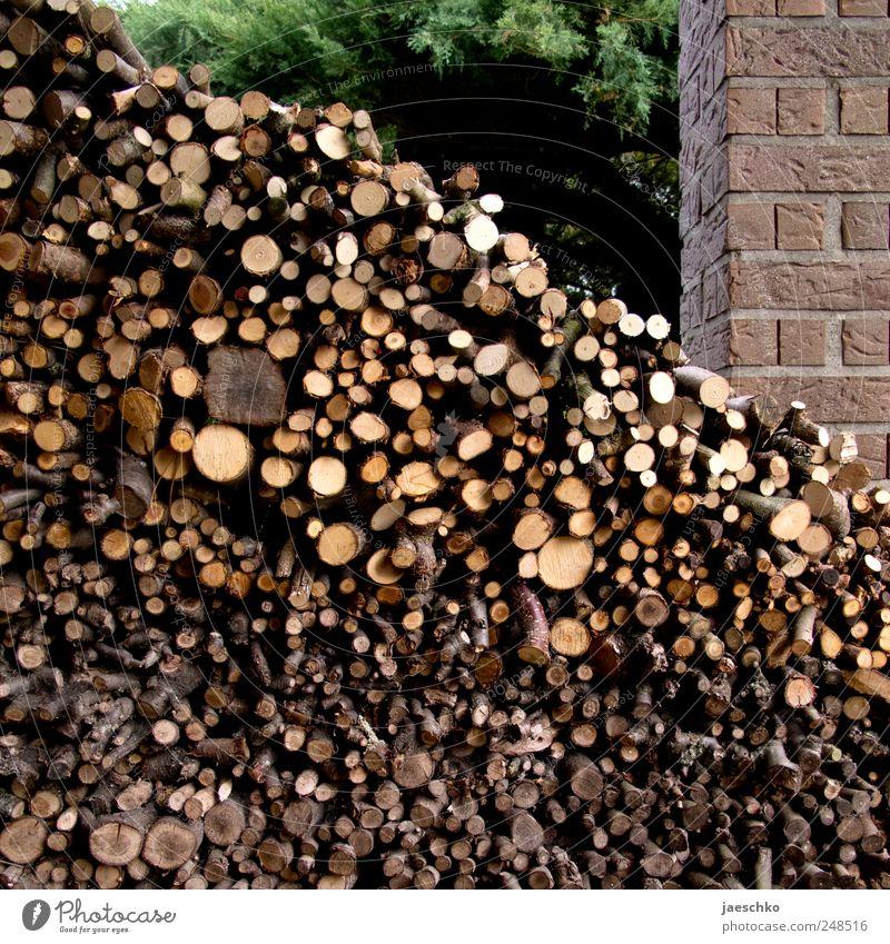 Old Wood Stone Garden Fresh Many Branch Hut Sustainability Storage Stack Gardening Heat Accumulate Firewood Supply