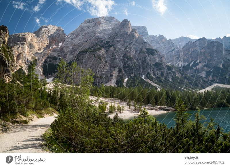 pure nature Vacation & Travel Summer vacation Mountain Hiking Nature Landscape Sky Sunlight Beautiful weather Forest Alps Dolomites Peak Lakeside