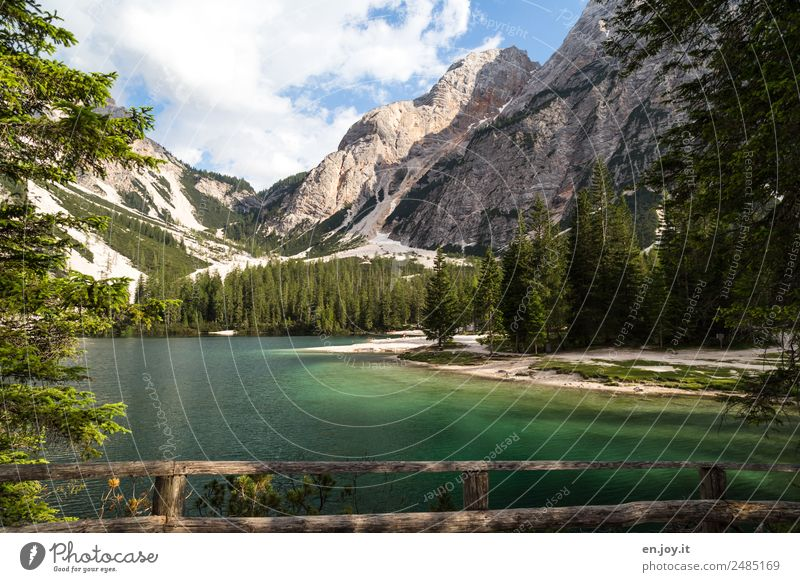 lakeshores Vacation & Travel Trip Adventure Summer Summer vacation Beach Mountain Hiking Nature Landscape Forest Alps Dolomites Lakeside Pragser Wildsee Lake
