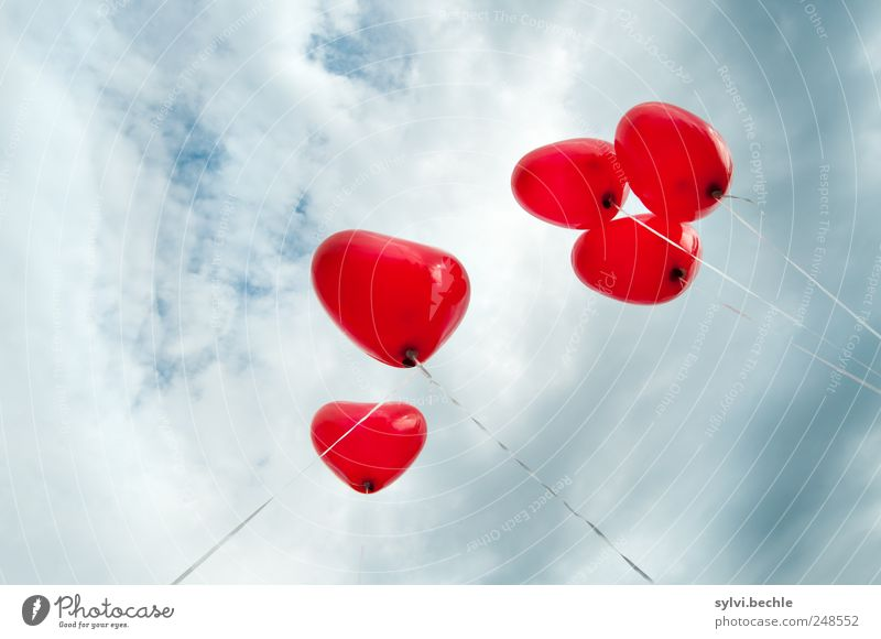 Sky Red Clouds Love Feasts & Celebrations Weather Flying Heart Balloon String Romance Storm Upward Infatuation Go up Knot
