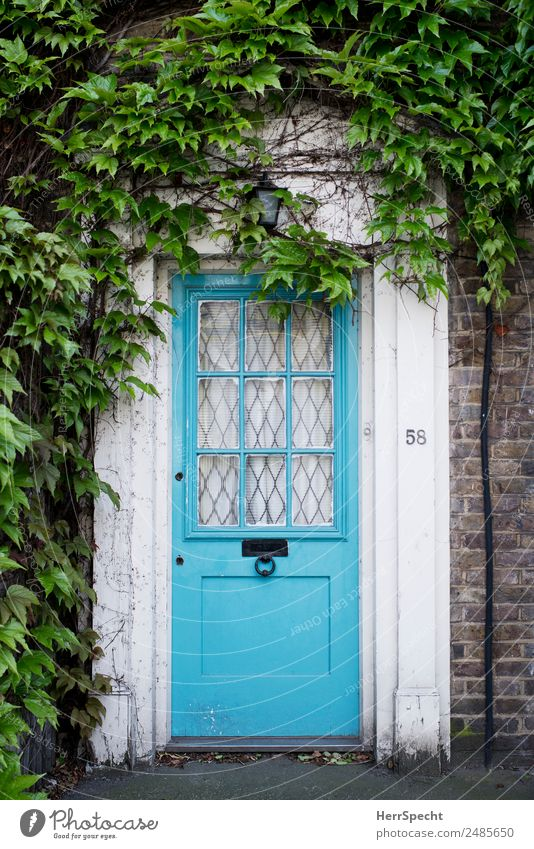 number 58 London House (Residential Structure) Detached house Building Architecture Wall (barrier) Wall (building) Door Esthetic Authentic Retro Beautiful Blue