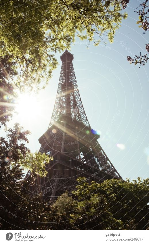 clearance sale Nature Sky Cloudless sky Summer Beautiful weather Tree Park Paris France Manmade structures Architecture Tourist Attraction Landmark Eiffel Tower