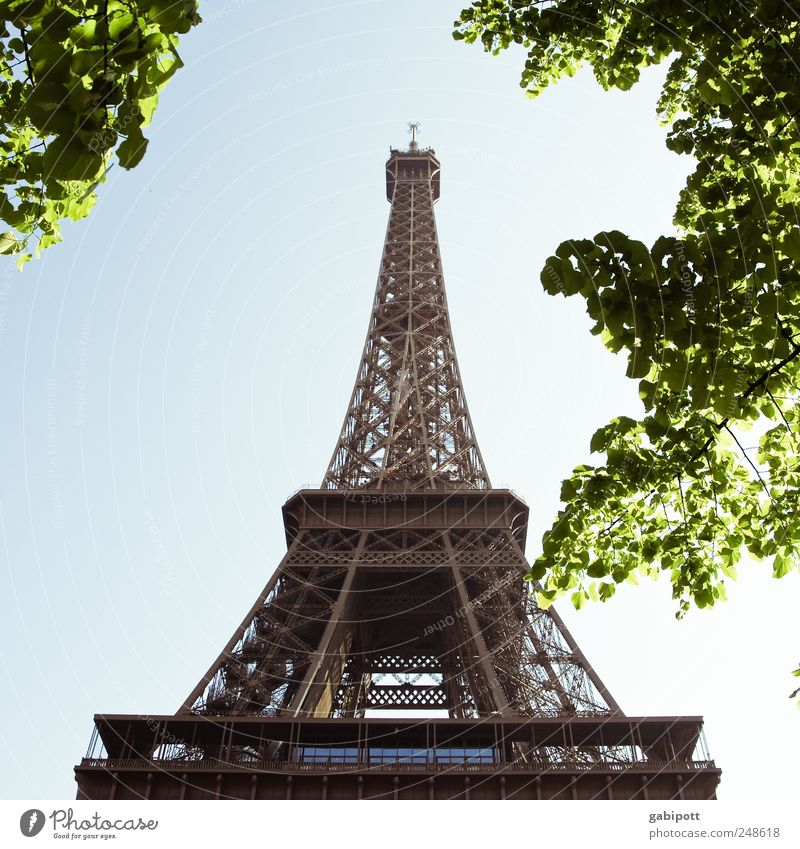 aspiring Nature Sky Cloudless sky Summer Beautiful weather Tree Park Paris France Downtown Tower Manmade structures Building Tourist Attraction Landmark