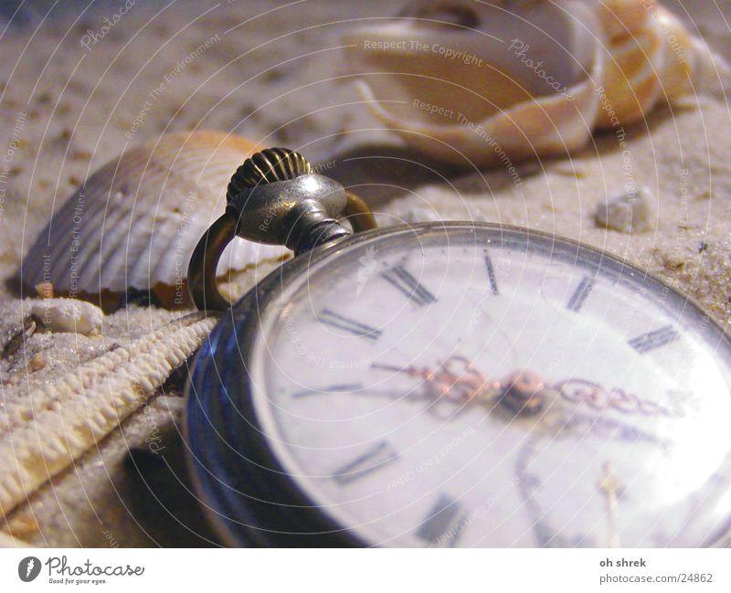 Ocean Beach Sand Time Leisure and hobbies Clock Mussel Fob watch