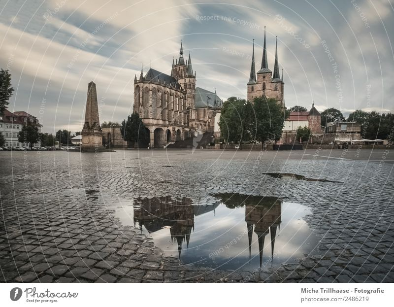 Erfurt Cathedral and Reflection Tourism Trip Sightseeing City trip Clouds Bad weather Rain Town Downtown Old town Deserted House (Residential Structure) Church