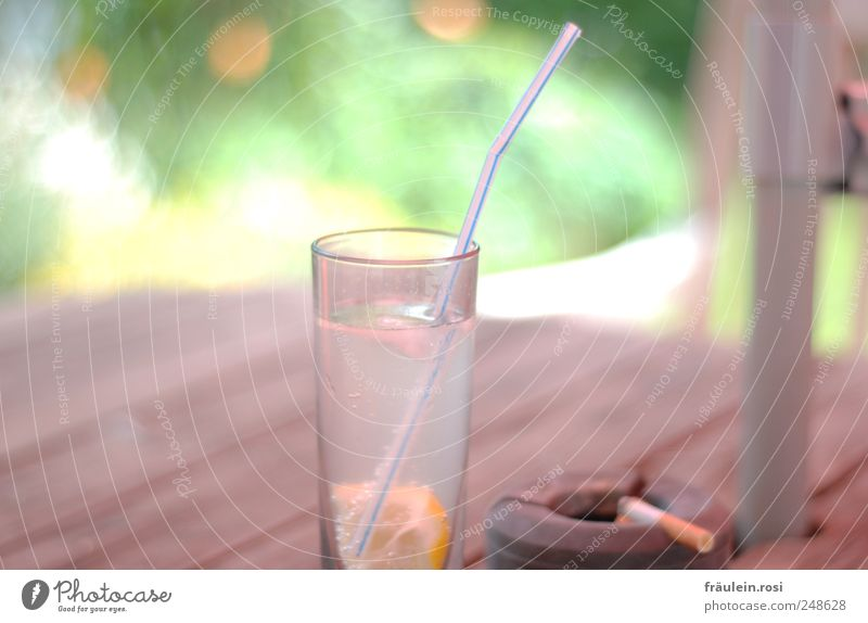 Calm Garden Wood Glass Fresh Bushes Smoking Plastic Delicious Cigarette Air bubble Lemon Straw Ashes Cold drink Ashtray