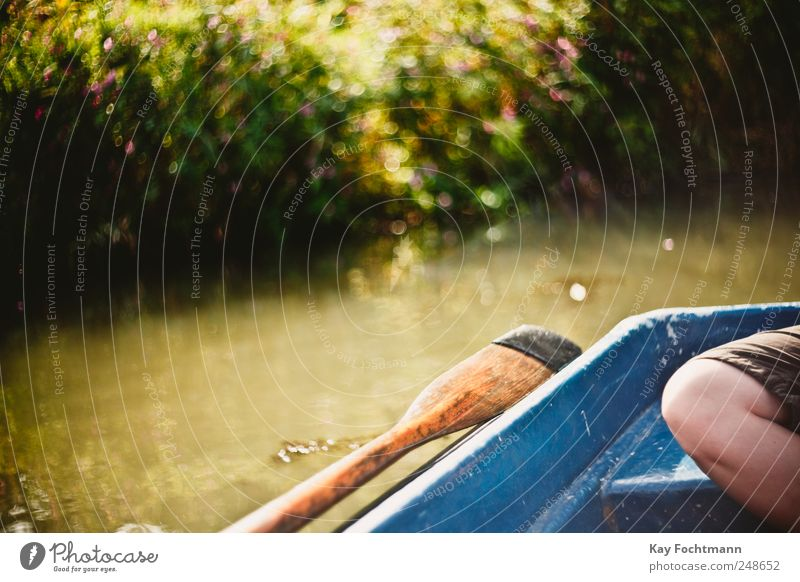 sommernsntagsbokeh Lifestyle Happy Leisure and hobbies Paddling Paddle Boating trip Vacation & Travel Trip Freedom Summer Summer vacation Legs 1 Human being