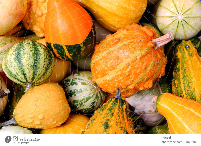 Pumpkins Food Vegetable Fruit Lunch Dinner Vegetarian diet Shopping Restaurant Yellow Green japanese Asia asian Japan healthy Tomato Sesame Onion Vegan diet
