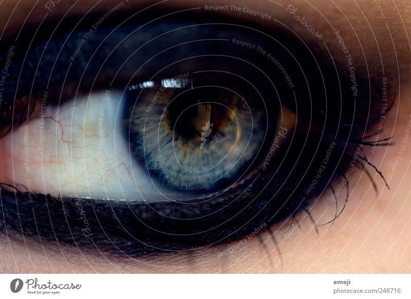 Blue Black Eyes Dark Make-up Pupil Iris Eyeliner Eye shadow