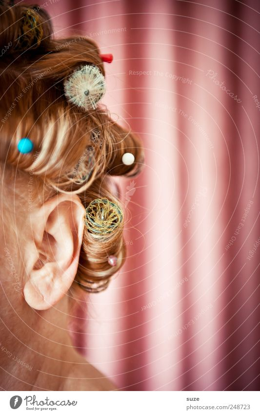 Woman Human being Beautiful Feminine Head Hair and hairstyles Adults Funny Pink Hair Retro Stripe Cloth Ear Shows Mask