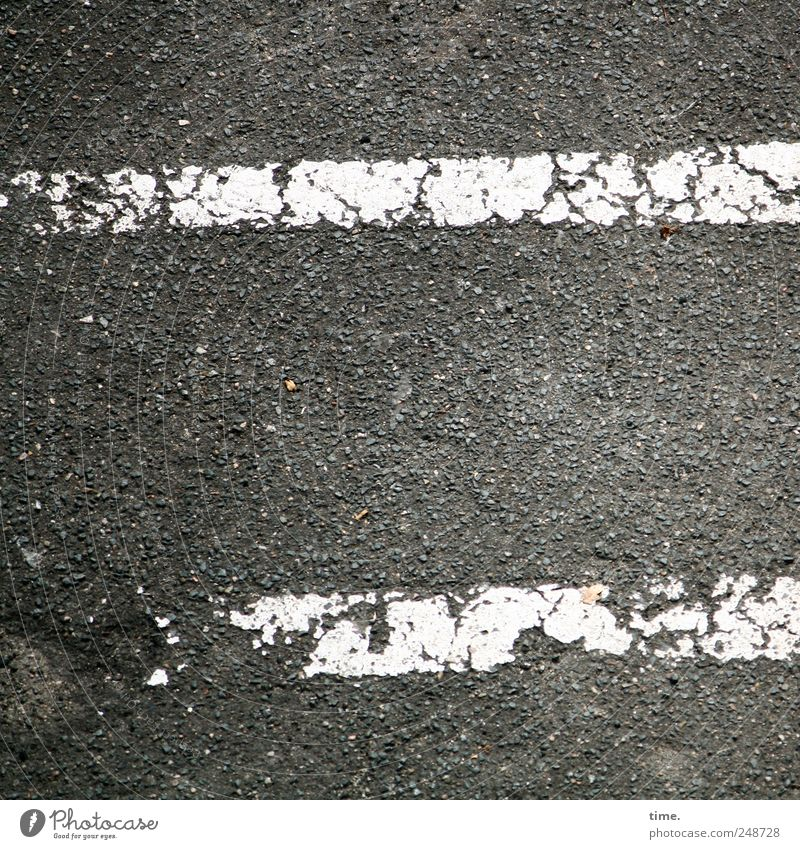 Old White Street Colour Gray Dye Line Signs and labeling Broken Asphalt Tar Parallel Decompose