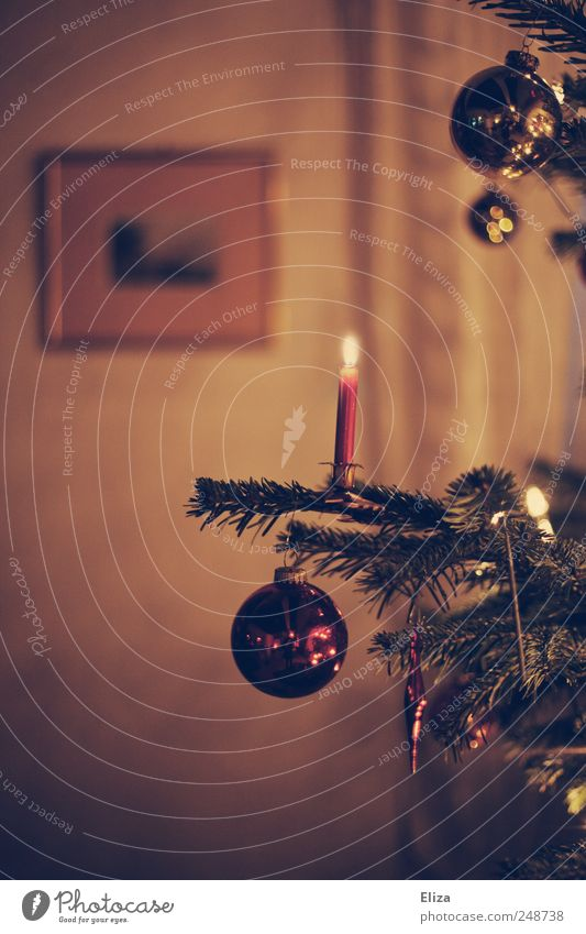 Decorated Christmas tree with burning candle and Christmas tree balls in the living room in retro colouring christmas tree Living room Christmas & Advent